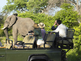 Side View of a Group of Tourists on Safari Watching Elephant Prints by  Nosnibor137