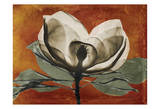 Magnolia Rust 1 Kunstdrucke von Albert Koetsier