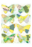 Butterfly Windows 2 Poster by Beverly Dyer