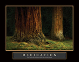 Ancient Forest Dedication Print by Vitaly Geyman