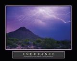 Lightning Endurance Posters by Douglas Taylor