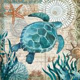 Monterey Bay III Poster van Geoff Allen