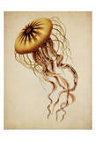 Jelly III Posters by Tina Carlson