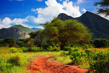 Red Ground Road and Bush with Savanna Panorama Landscape in Africa. Tsavo West, Kenya. Prints by PHOTOCREO Michal Bednarek