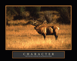 Bull Elk Character Prints by William Castner