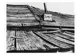 Bodi Roof Prints by Albert Koetsier