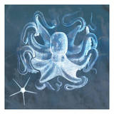 Octopus Poster by Tina Carlson