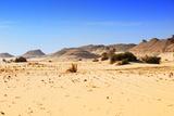Sahara Desert, Western Desert, Egypt Photographic Print by Oleg Znamenskiy