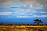 Mount Kilimanjaro Partly in Clouds, View from Savanna Landscape in Amboseli, Kenya, Africa Photographic Print by PHOTOCREO Michal Bednarek