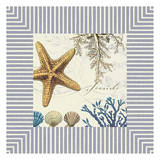 Seaside Star Print by Elizabeth Jordan