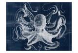 Big Blue Prints by Tony Pazan