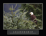 America's Bird Leadership Posters by Susann Parker
