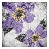 Flora Symphony 4 Prints by Diane Stimson