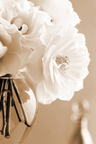 Roses in Sepia Print