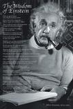 The Wisdom of a Genius - Posterler