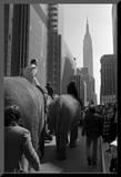 W - April, 1972 Mounted Photo