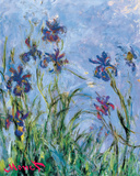 Irises - detail Prints by Claude Monet