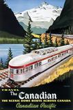 CP Train - Scenic Dome Kunstdruck