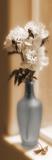 Peonies in Blue Vase Láminas