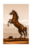 Rearing Horse Illustration Posters par  duallogic