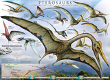 Pterosaurs - Flying Reptiles Prints