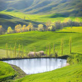Fields by the Pond Photographic Print by Marcin Sobas