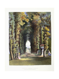 Vista' in the Gardens of Teddesley, Seat of the Right Honorable Lord Hatherton, 1857 Giclee Print by E. Adveno Brooke