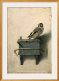 The Goldfinch, 1654 Print by Carel Fabritius