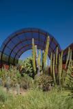 Phoenix Botanical Gardens, Arizona,USA Photographic Print by Anna Miller