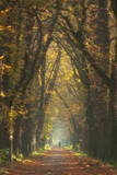 Old Woman Photographic Print by Marcin Sobas