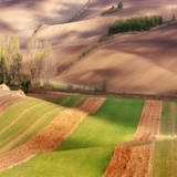 Autumn on Fields Photographic Print by Marcin Sobas