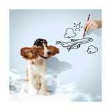 Funny Spaniel Dog Prints by Sergey Nivens