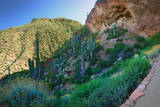 Cliff Dwellings of Tonto National Monument, Arizona,USA Photographic Print by Anna Miller