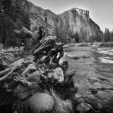Yosemite Valley View from Bank of Merced River Photographic Print by Anna Miller