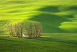 Chapel Photographic Print by Marcin Sobas