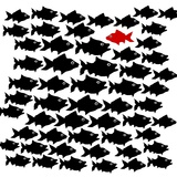 One Fish Swim in opposite Direction, Dare to Be Different Concept Photographic Print by  mypokcik
