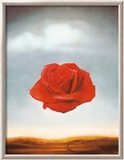 Rose méditative, 1958 Art par Salvador Dalí