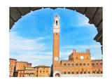 Piazza del Campo, Siena Posters by  Tosh