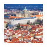 St. Vitus Cathedral from Petrin Observation Tower Prints by  Tosh