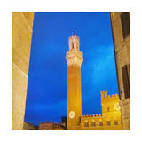 Piazza del Campo, Siena Prints by  Tosh