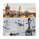 Charles Bridge Print by  Tosh