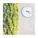 Town Clock with Cypress Tree Art by  Tosh