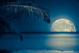 Beautiful Full Moon Reflected on the Calm Water of a Tropical Beach (Toned in Blue) Photographic Print by  Kamira