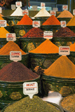 Spices Collage Photographic Print