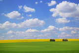 Field with Barn Photographic Print