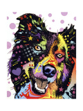 Border Collie Giclee Print by Dean Russo