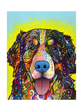 Bernese Mountain Dog Giclee Print by Dean Russo