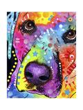 Closeup Labrador Wydruk giclee autor Dean Russo