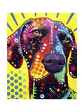 German Short Hair Pointer Giclee Print by Dean Russo