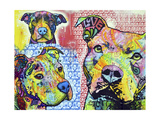 Thoughtful Pit Bull This Years Love 2013 Part 3 Giclee Print by Dean Russo